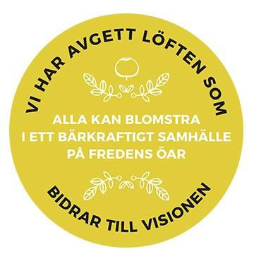 Bärkraft_vision